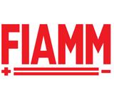 Аккумуляторы Fiamm